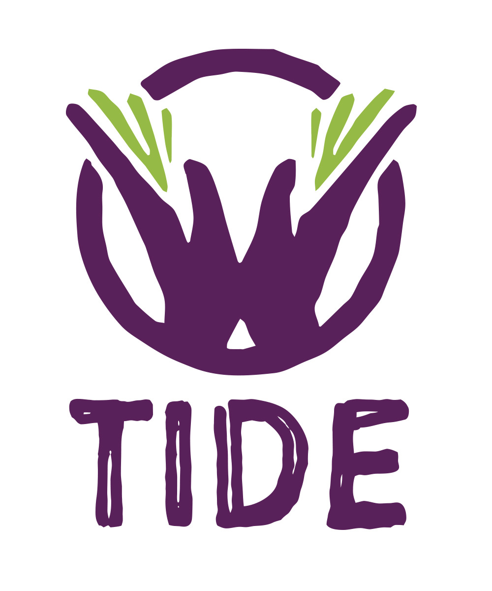 Tide project new tools for inclusion of dyslexic students tide project biocorpaavc Image collections